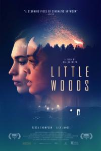 Little Woods - HD /