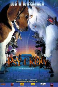 Psy i koty / Cats & Dogs